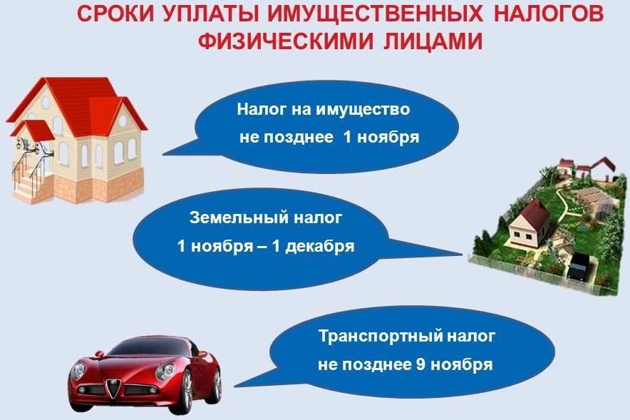 Как сделать налог на имущество
