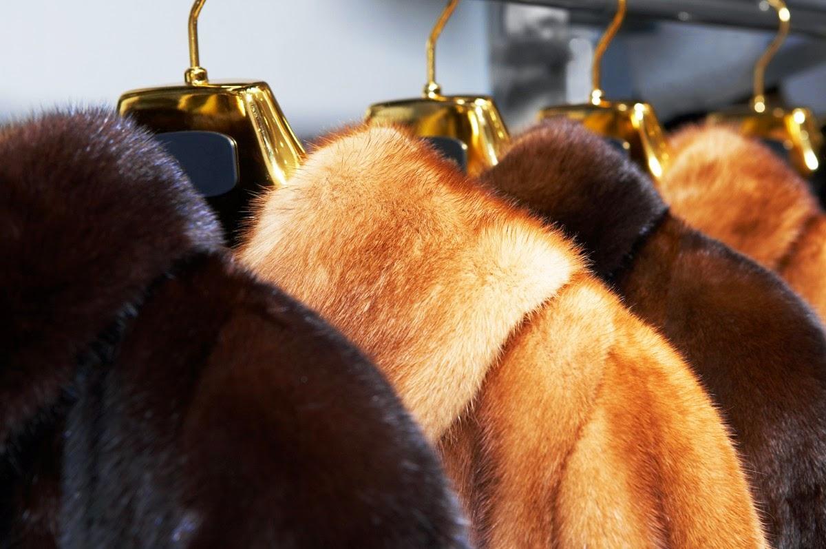 В государствах  ЕАЭС ввели запрет на реализацию  немаркированных мехов