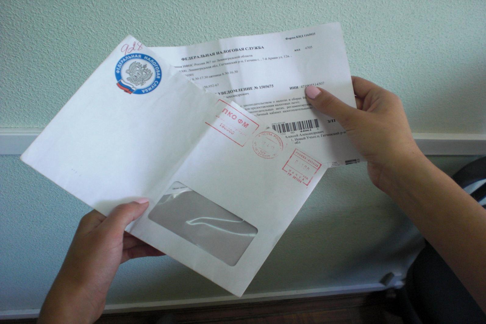 про не пришли письма из налоговой нежность